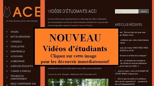 Avez-vous visité notre nouvelle section / VIDEOS D'ETUDIANTS ACE?